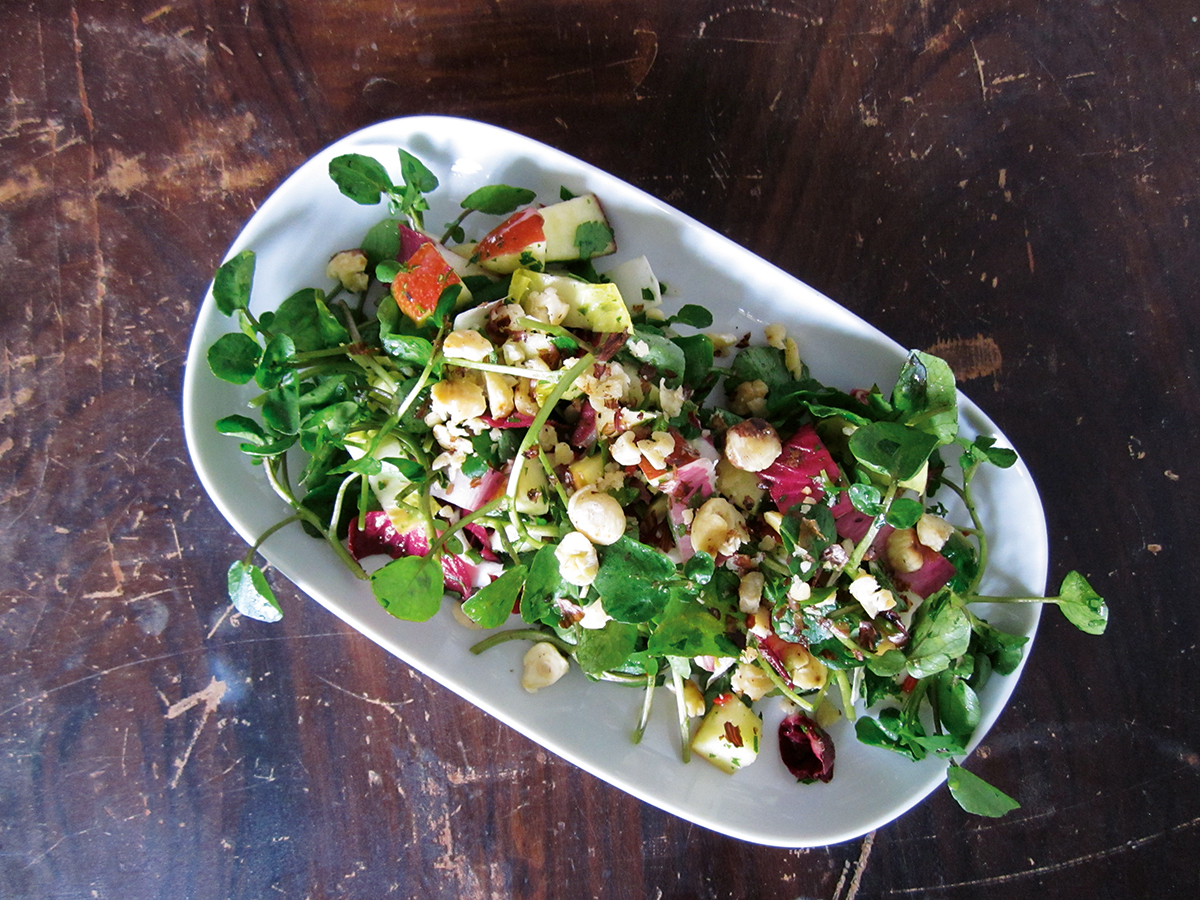 Chicorée-Apfel-Salat